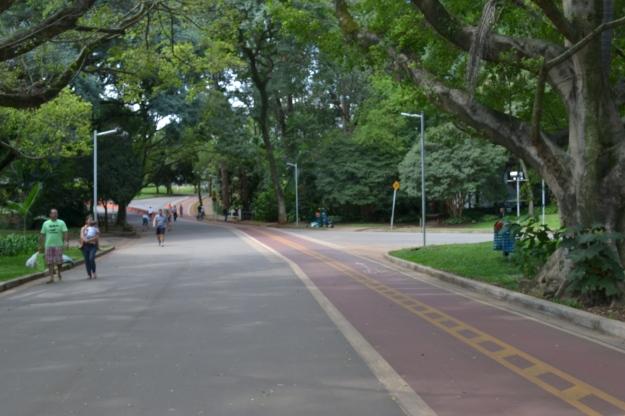 Pista do Lago, Parque do Ibirapuera, São Paulo